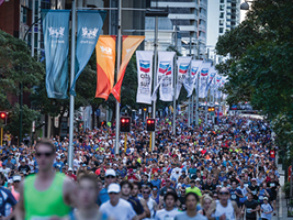Chevron City to Surf