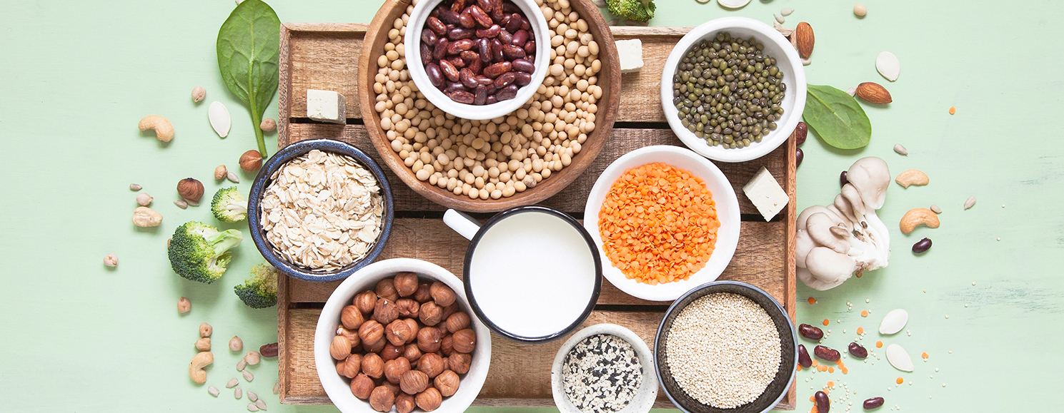 Marika Day: A dietitian's guide to plant-based protein